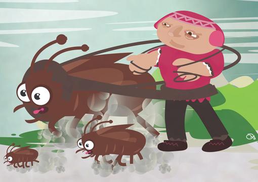 Beetle Herder