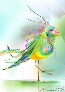 Rainbow Moorhen