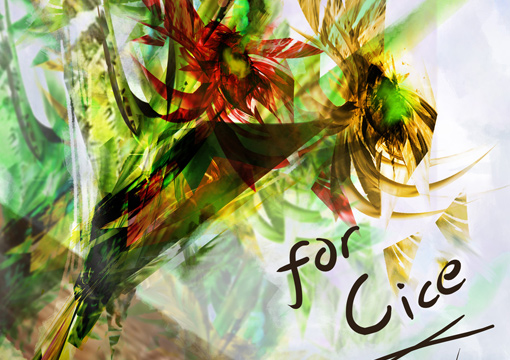 Flower for Cice