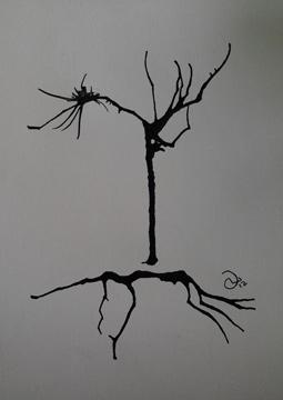 NOE Tree